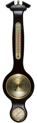 Ambient Weather WS-YG332 Banjo Weather Station with Thermome